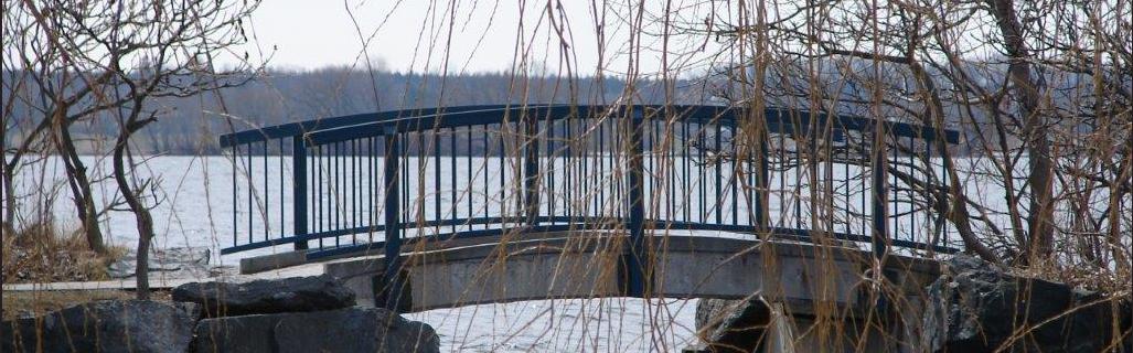 bridge 1027x320